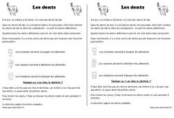Dents - Trace écrite - Découverte du monde - Cours, Leçon : 1ere Primaire