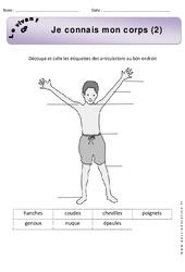Je connais mon corps - Exercices 2 - Découverte du monde : 1ere Primaire