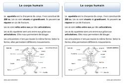 Corps humain - Trace écrite - Découverte du monde - Cours, Leçon : 1ere Primaire