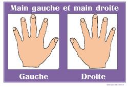 Main gauche - Main droite - Affichages pour la classe : 1ere, 2eme, 3eme Maternelle - Cycle Fondamental