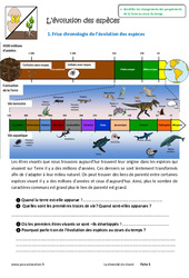 Evolution des espèces - Exercices : 6eme Primaire