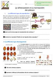 Développement et reproduction des animaux - Exercices : 6eme Primaire