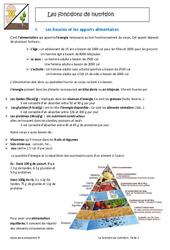 Fonctions de nutrition - Cours : 6eme Primaire