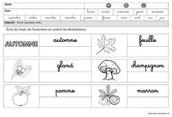 Automne - Ecrire des mots en cursive : 3eme Maternelle - Cycle Fondamental