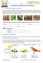 Besoins alimentaires des animaux - Exercices : 6eme Primaire