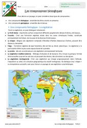 Composantes biologiques - Exercices : 6eme Primaire