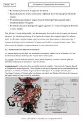Digestion - Apport des nutriments dans le sang - Cours - SVT : 1ere Secondaire